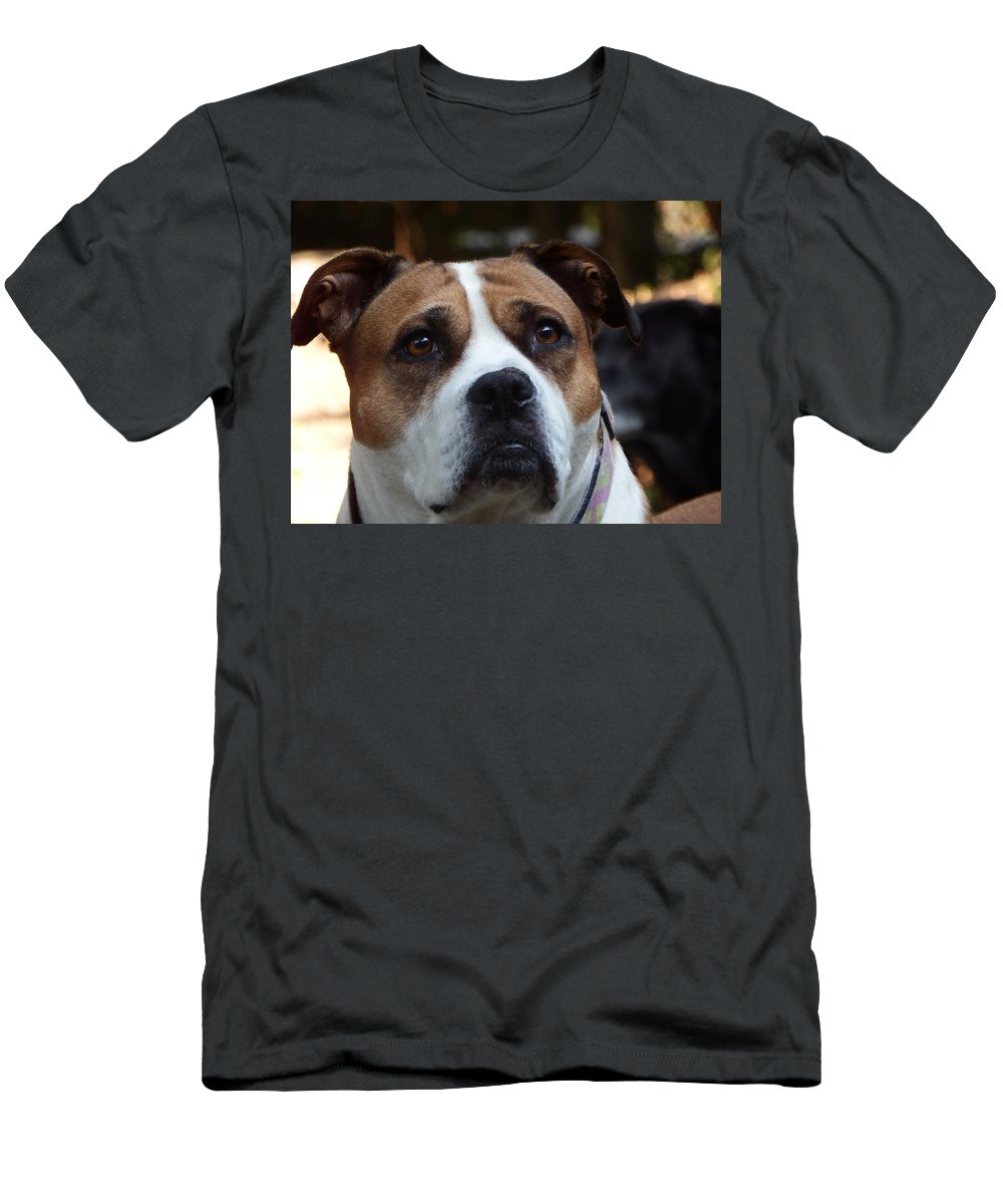 Men's T-Shirt (Athletic Fit) featuring the photograph Sassy by Mark Dibble