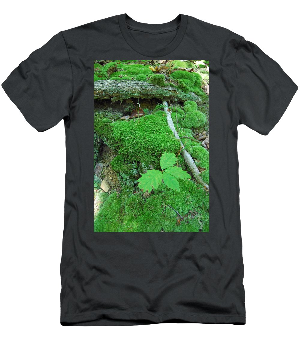 Green Men's T-Shirt (Athletic Fit) featuring the photograph Sassy Sapling by Trish Hale