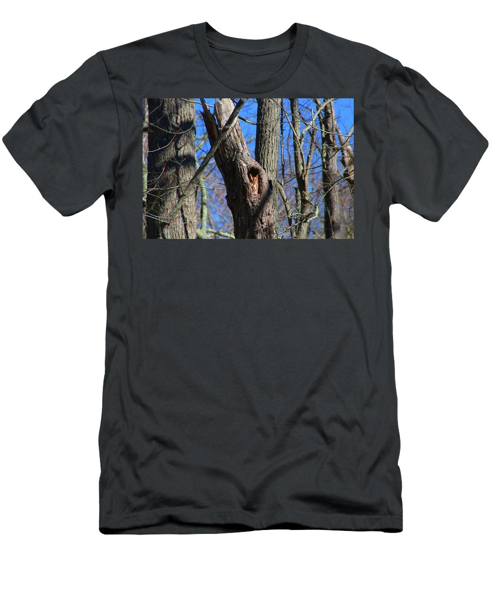Screeh Owl Men's T-Shirt (Athletic Fit) featuring the photograph Screech by James Caine