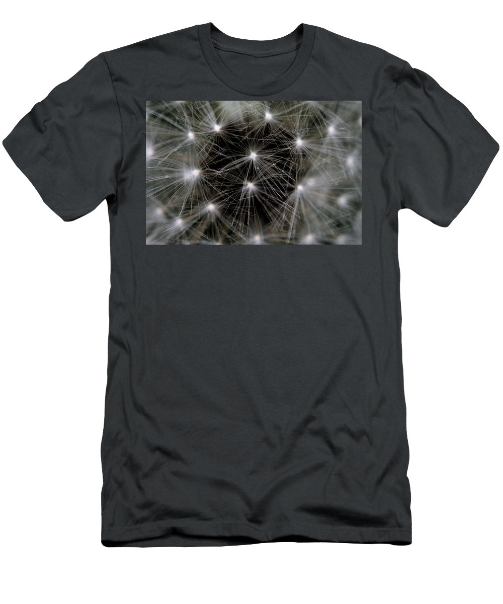 Dandelion Men's T-Shirt (Athletic Fit) featuring the photograph Seedy by Angela Rath