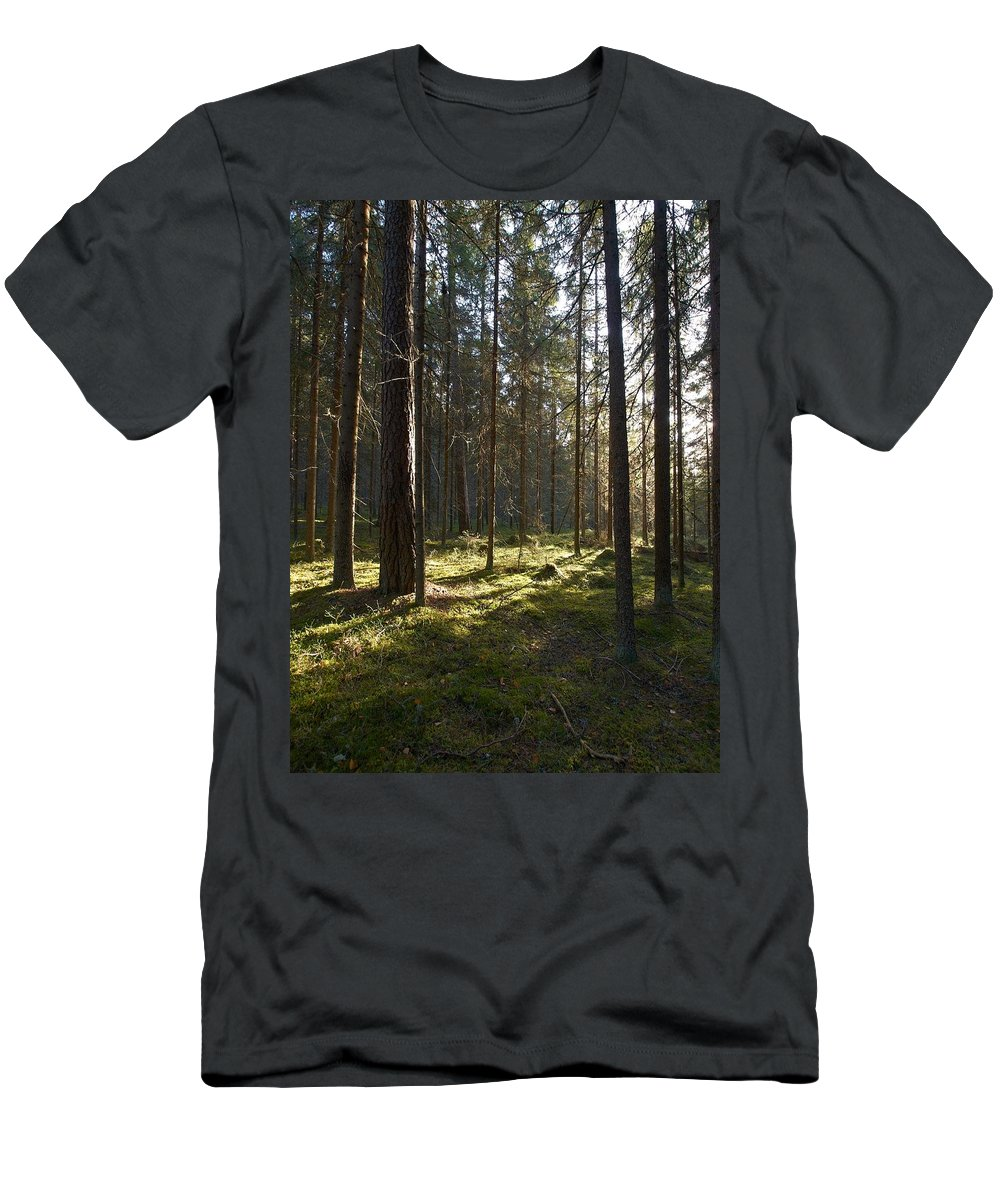 Lehtokukka Men's T-Shirt (Athletic Fit) featuring the photograph Seitseminen National Park by Jouko Lehto