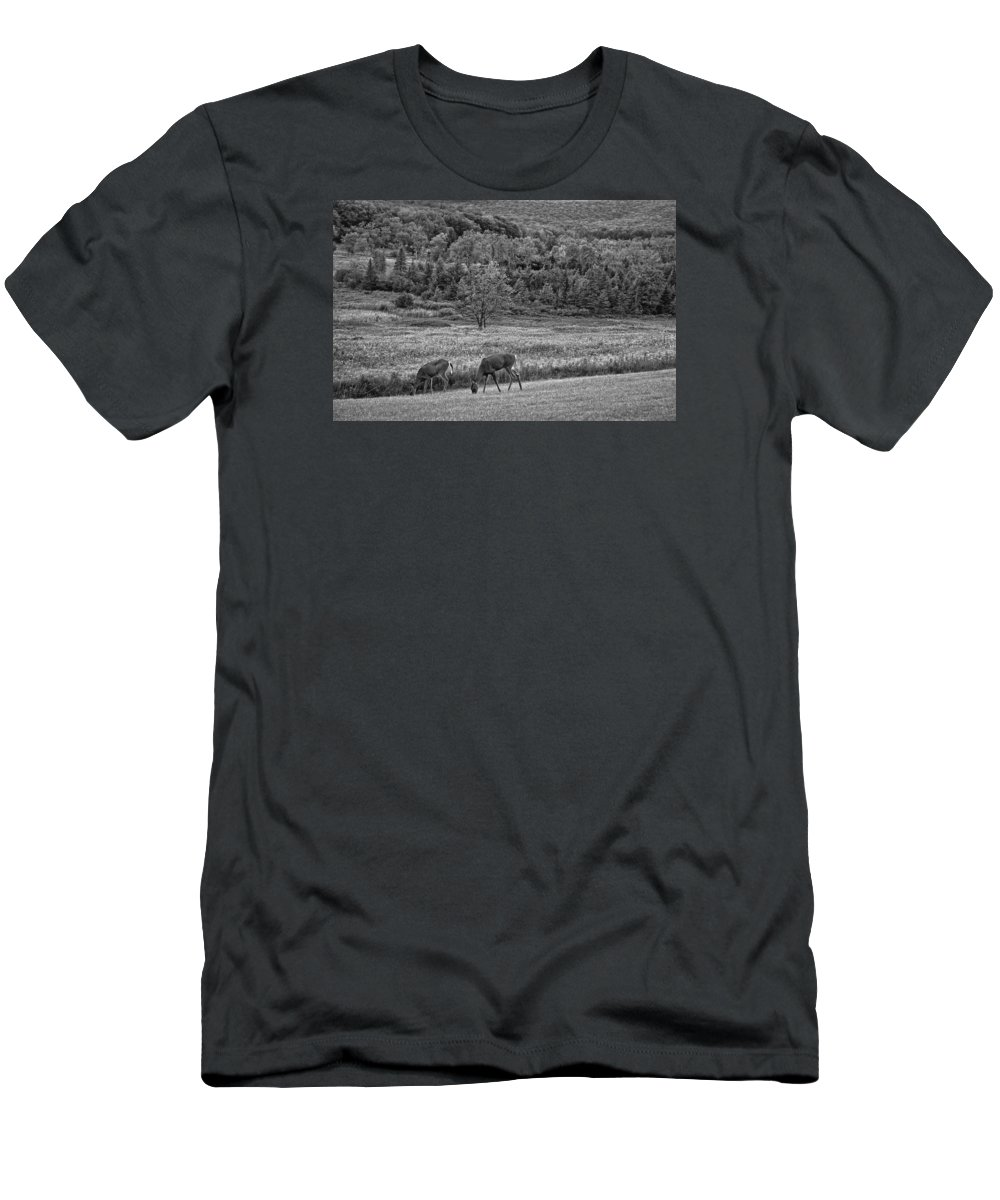 Canaan Valley Men's T-Shirt (Athletic Fit) featuring the photograph Shh... Bw by Steve Harrington