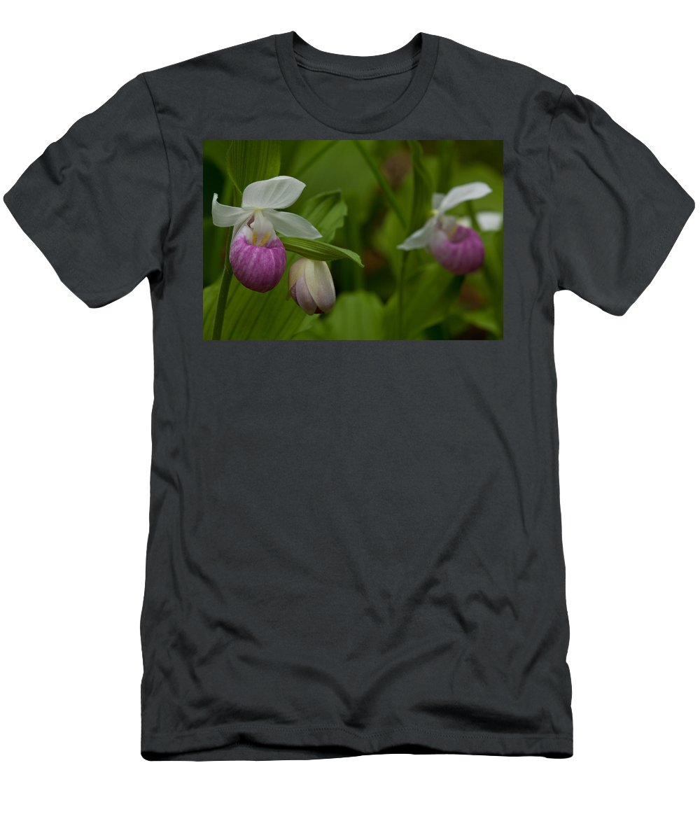 Wildflowers Men's T-Shirt (Athletic Fit) featuring the photograph Showy Impressions by Irwin Barrett
