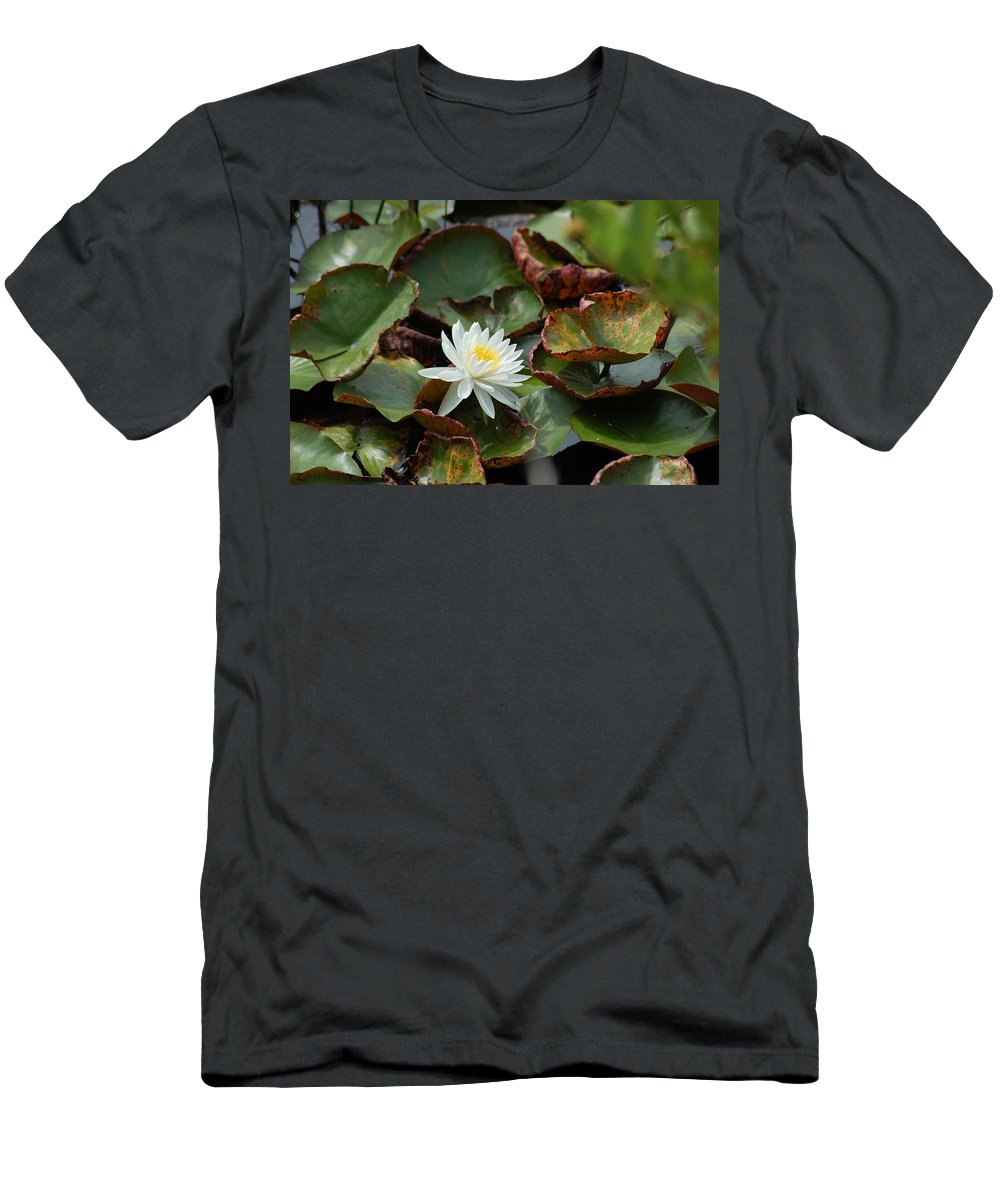 Water Men's T-Shirt (Athletic Fit) featuring the photograph Single Water Lilly by Michael Thomas