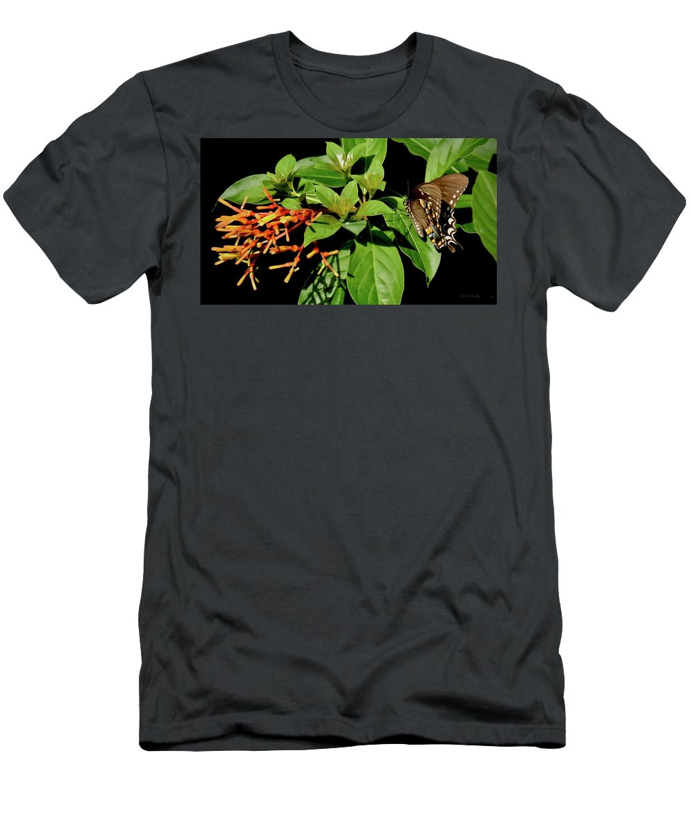 Butterfly Men's T-Shirt (Athletic Fit) featuring the photograph Sitting In The Morning Sun by Carol Bradley