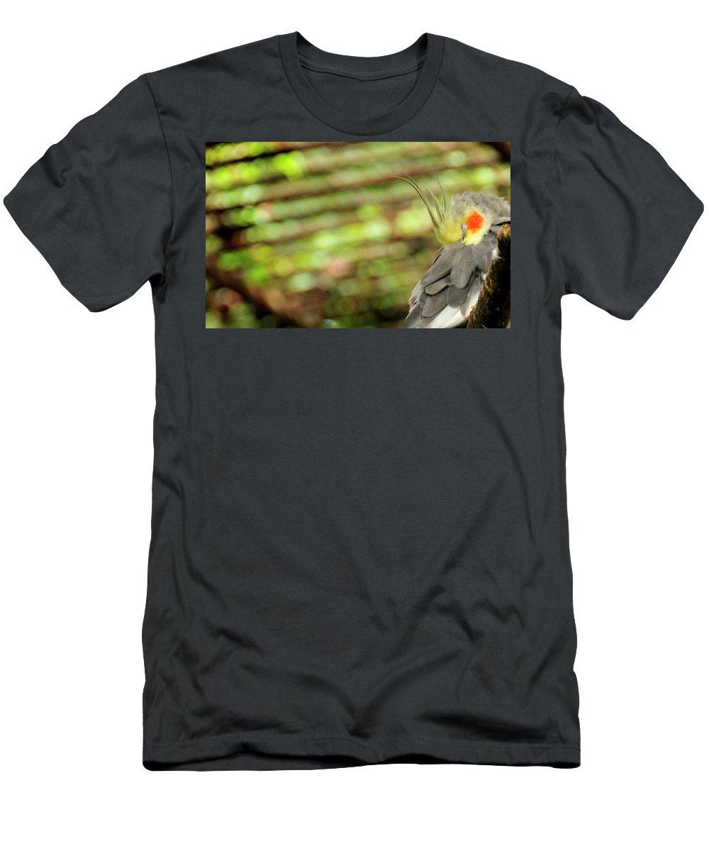 Bird Men's T-Shirt (Athletic Fit) featuring the photograph Sleeper by David Arment