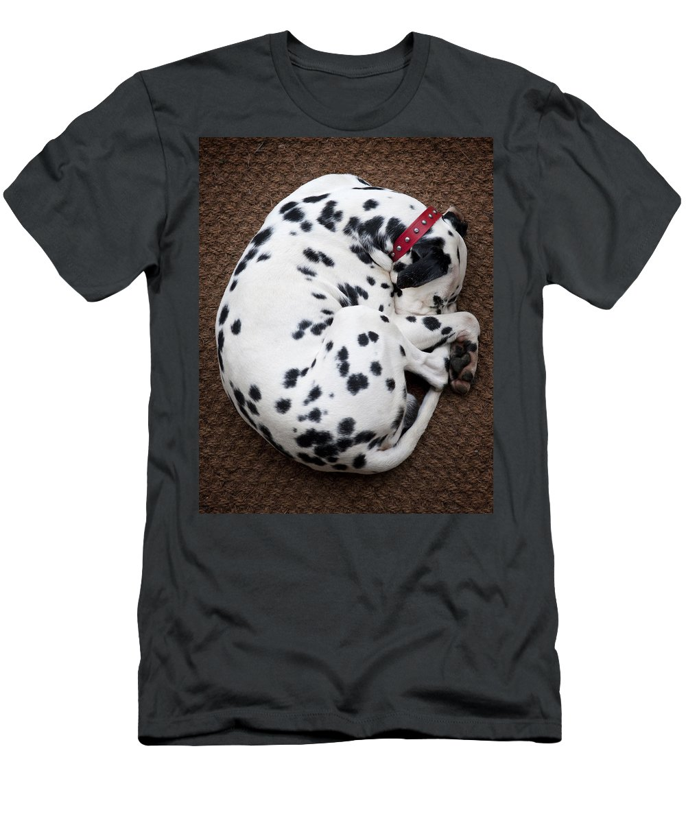 Dog Men's T-Shirt (Athletic Fit) featuring the photograph Sleeping Dalmatian by Rafa Rivas