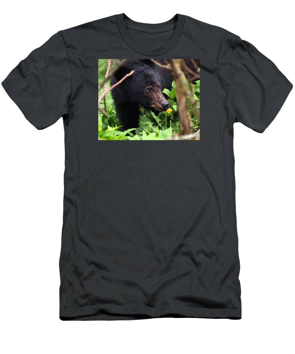 Bear Men's T-Shirt (Athletic Fit) featuring the photograph Smelling The Flowers by Don Keisling