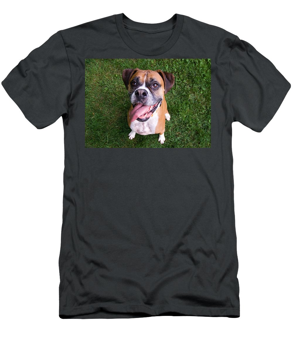 Boxer Men's T-Shirt (Athletic Fit) featuring the photograph Smiling Boxer Dog by Stephanie McDowell