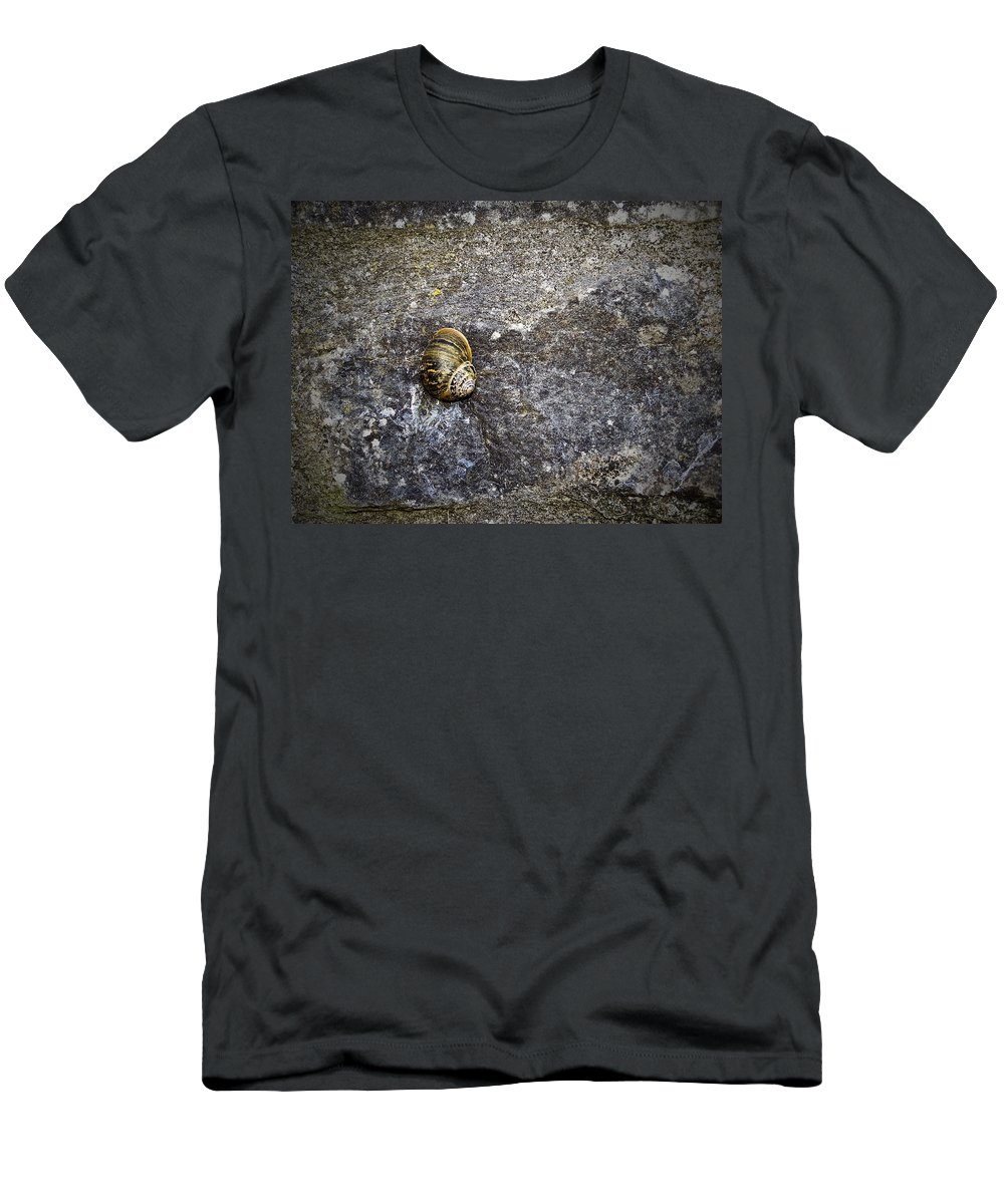 Irish Men's T-Shirt (Athletic Fit) featuring the photograph Snail At Ballybeg Priory County Cork Ireland by Teresa Mucha