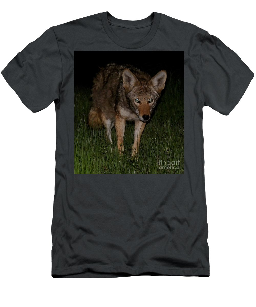 Wildlife Men's T-Shirt (Athletic Fit) featuring the photograph Sneaking A Peek by Traci Hallstrom