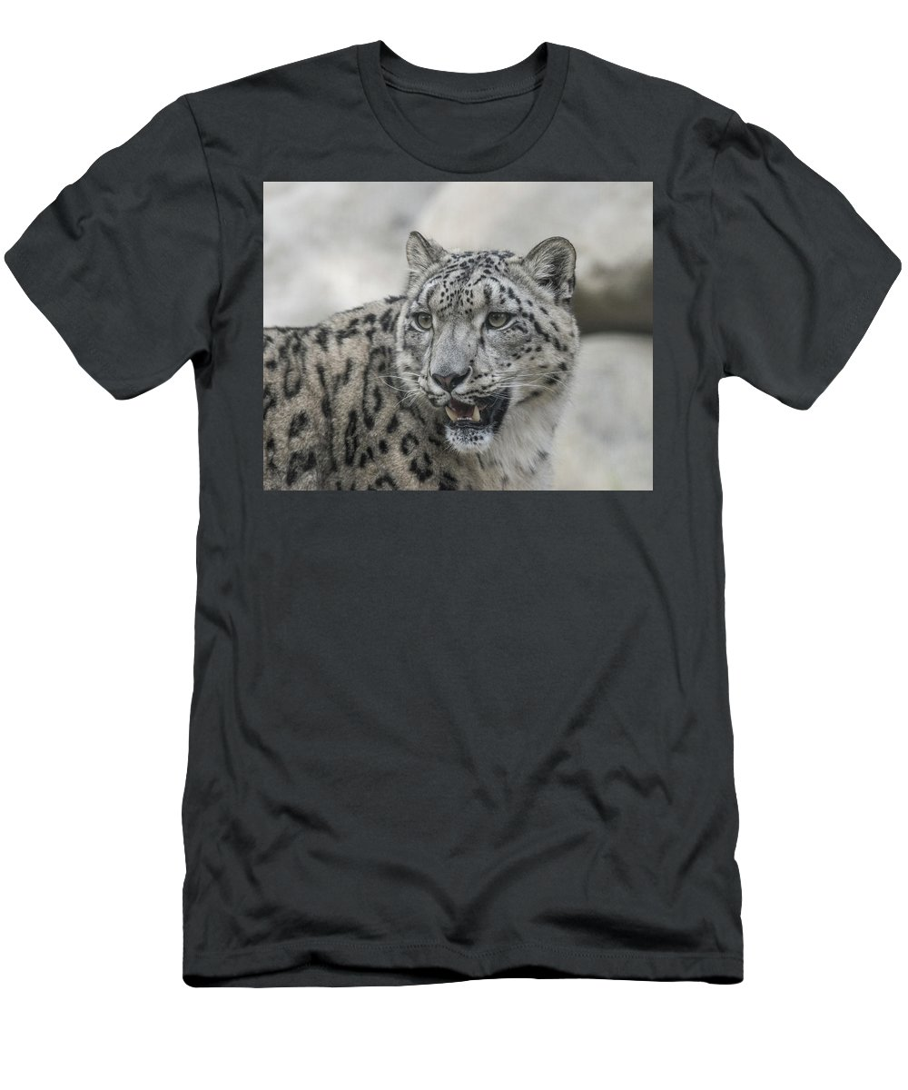 Snow Men's T-Shirt (Athletic Fit) featuring the photograph Snow Leopard by Andrew Lelea