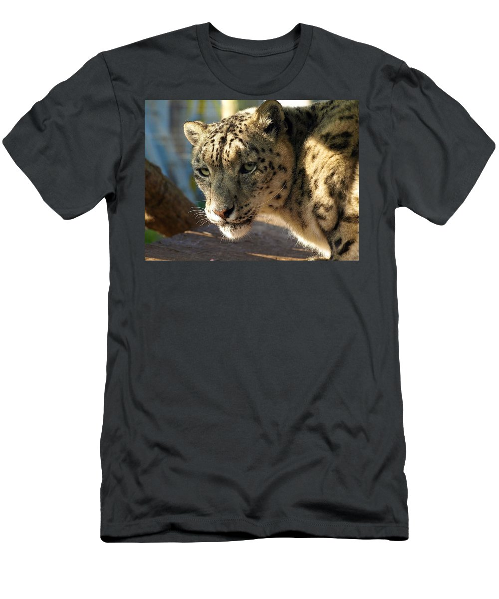 Snow Leopard Men's T-Shirt (Athletic Fit) featuring the digital art Snow Leopard by Dorothy Binder