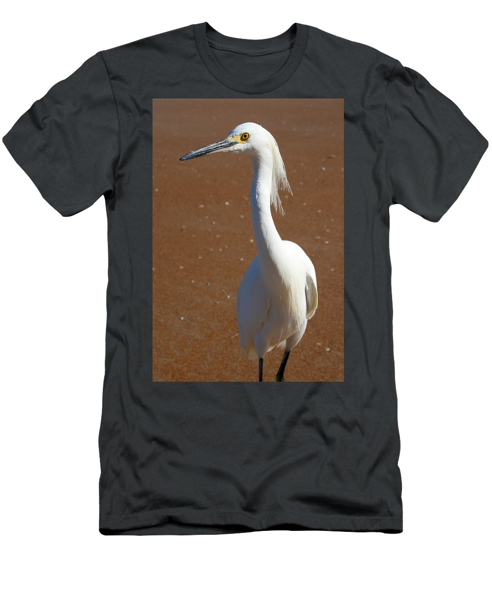 Bird Beach Sand White Bright Yellow Curious Egret Long Neck Feather Eye Ocean Men's T-Shirt (Athletic Fit) featuring the photograph Snowy Egret by Andrei Shliakhau