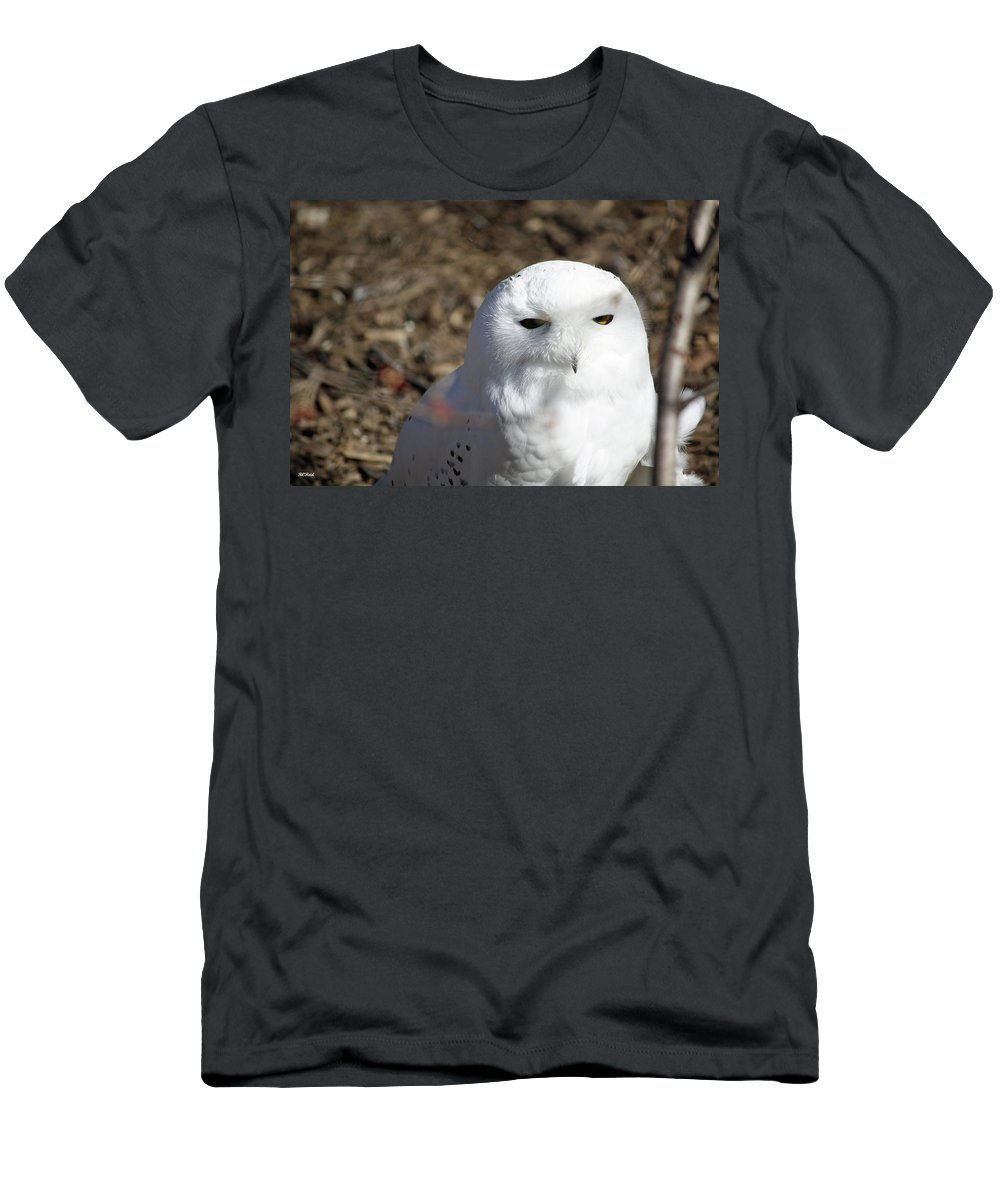 Maryland Men's T-Shirt (Athletic Fit) featuring the photograph Snowy Owl by Ronald Reid