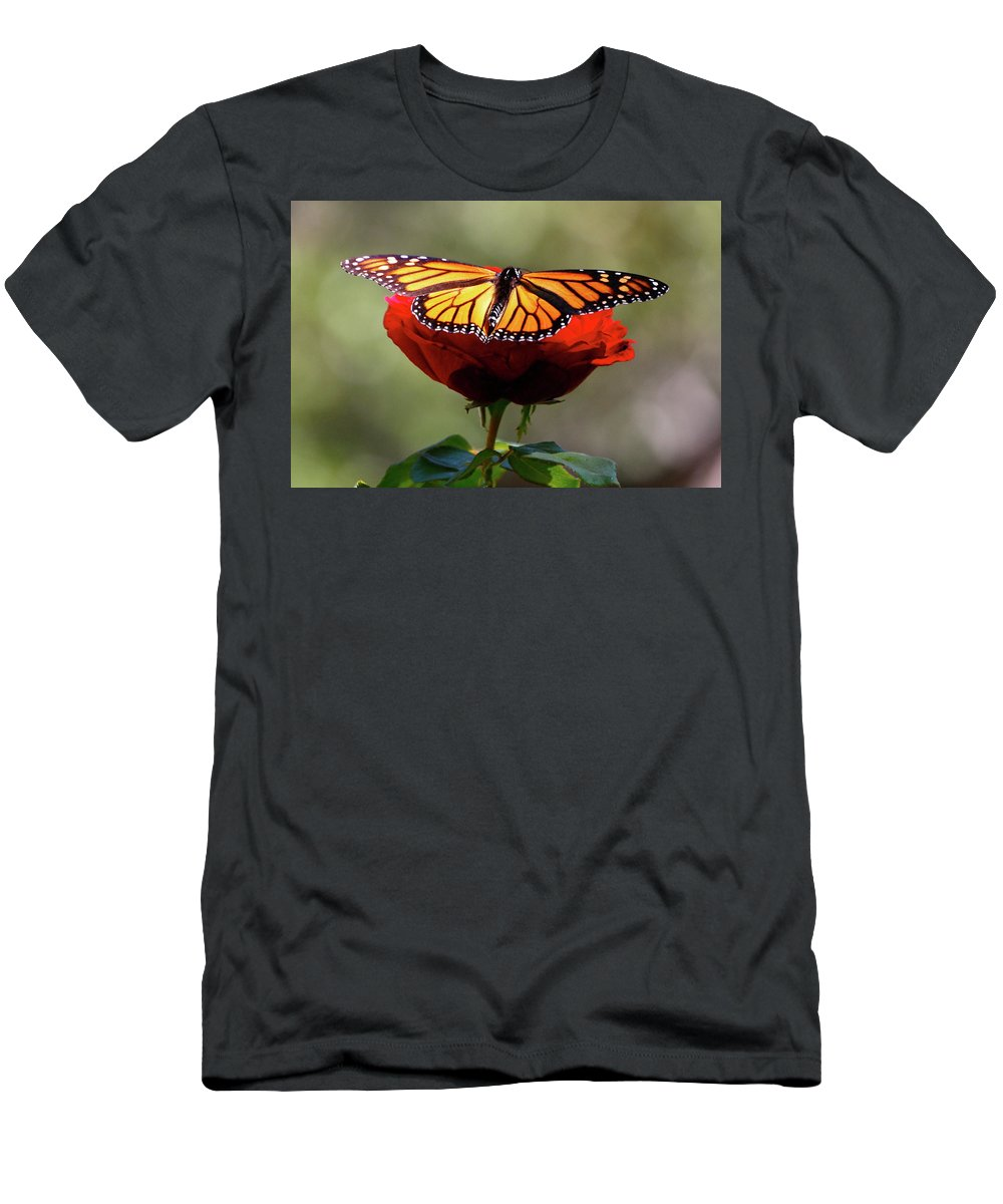Monarch Butterfly Men's T-Shirt (Athletic Fit) featuring the photograph Soft Landing by Debbie Karnes