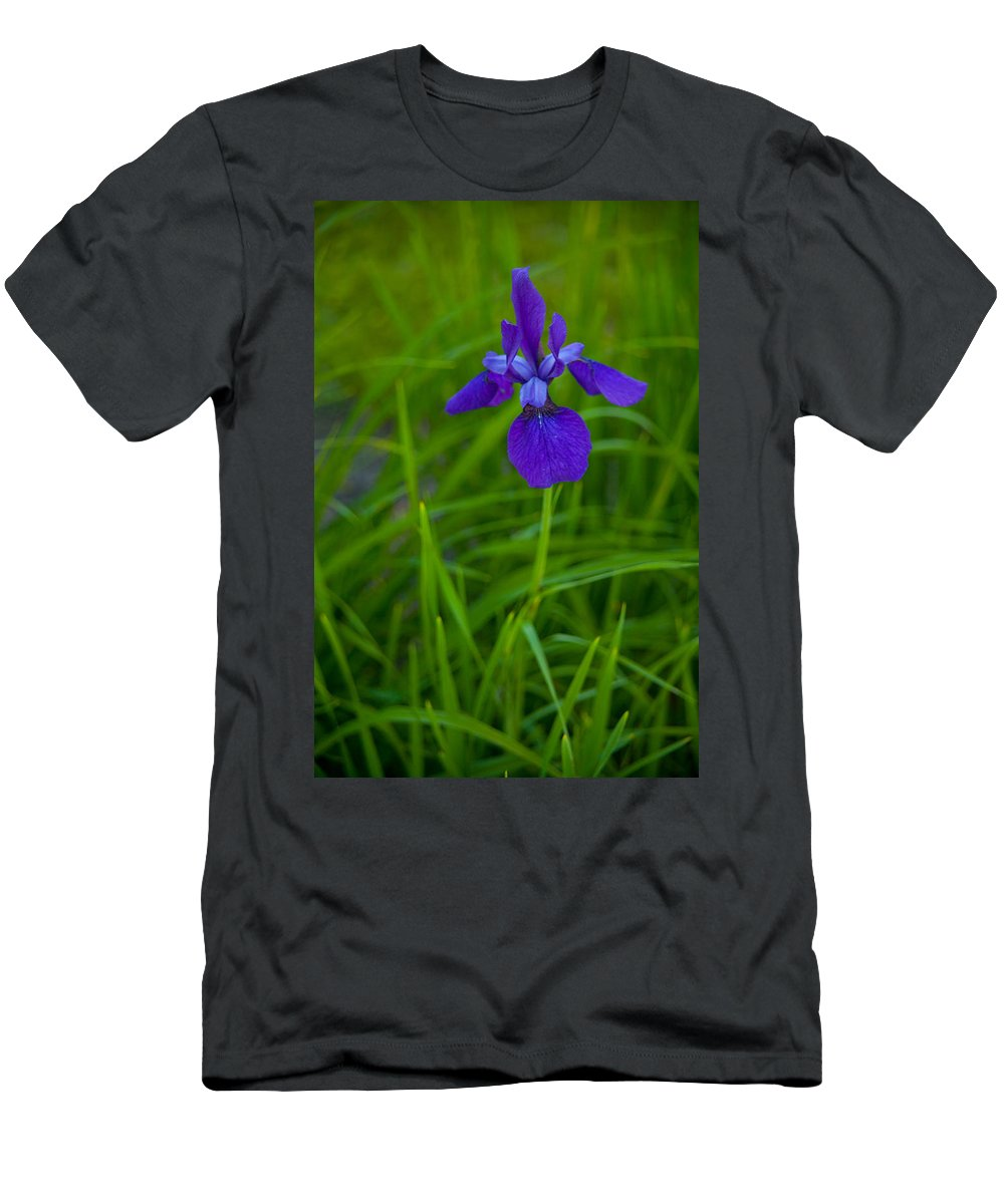 Blue Flag Men's T-Shirt (Athletic Fit) featuring the photograph Solitary Blue Flag by Irwin Barrett