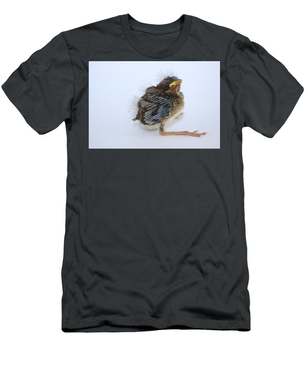 Sparrow Men's T-Shirt (Athletic Fit) featuring the photograph Sparrow Chick by Robert Hamm