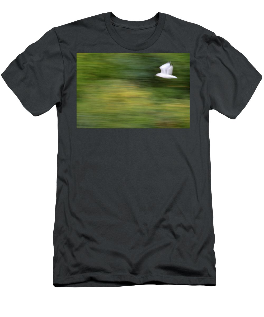 Seagull Men's T-Shirt (Athletic Fit) featuring the photograph Speed In Flight by Karol Livote
