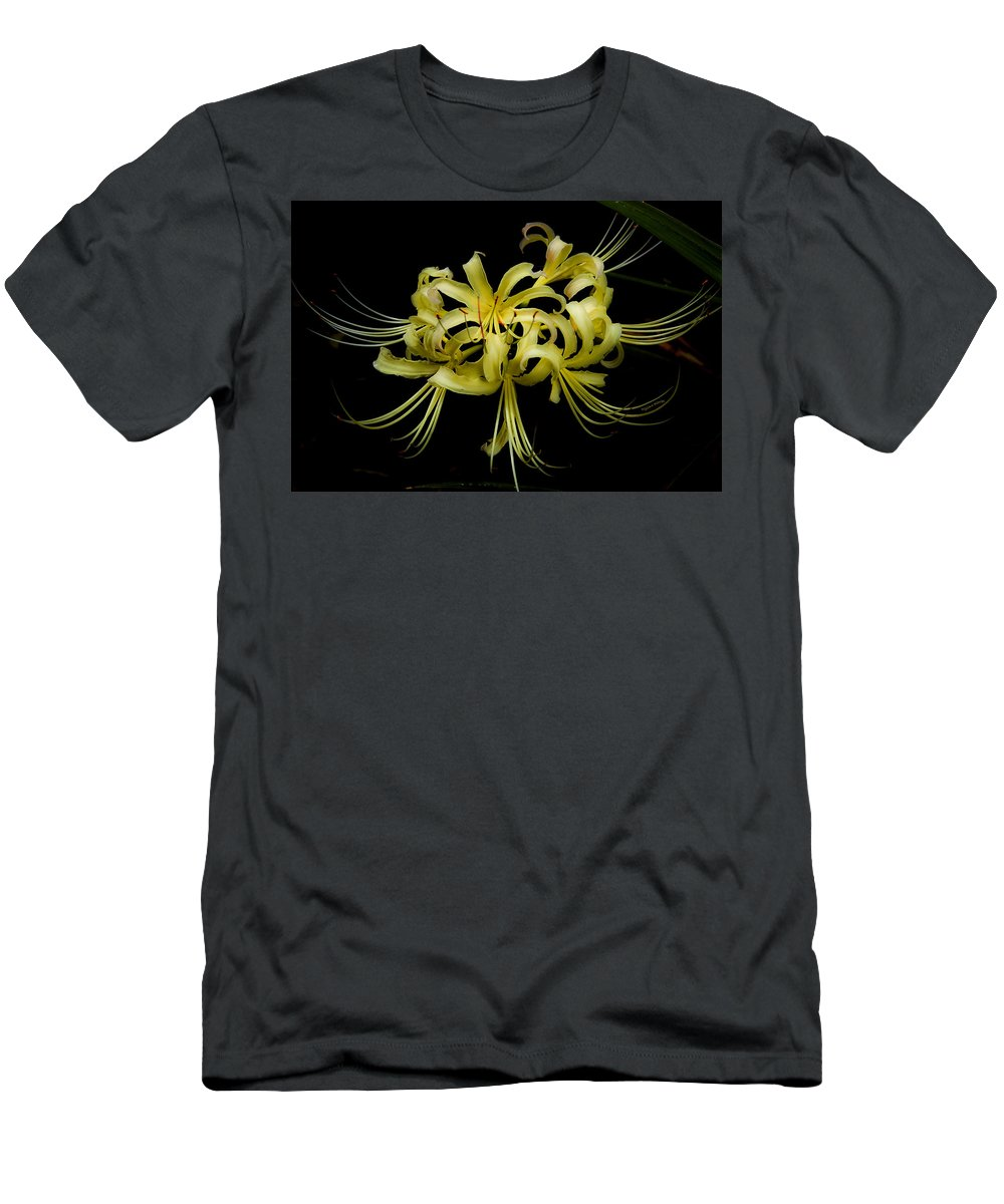 Spider Lily Men's T-Shirt (Athletic Fit) featuring the digital art Spider Lily by DigiArt Diaries by Vicky B Fuller