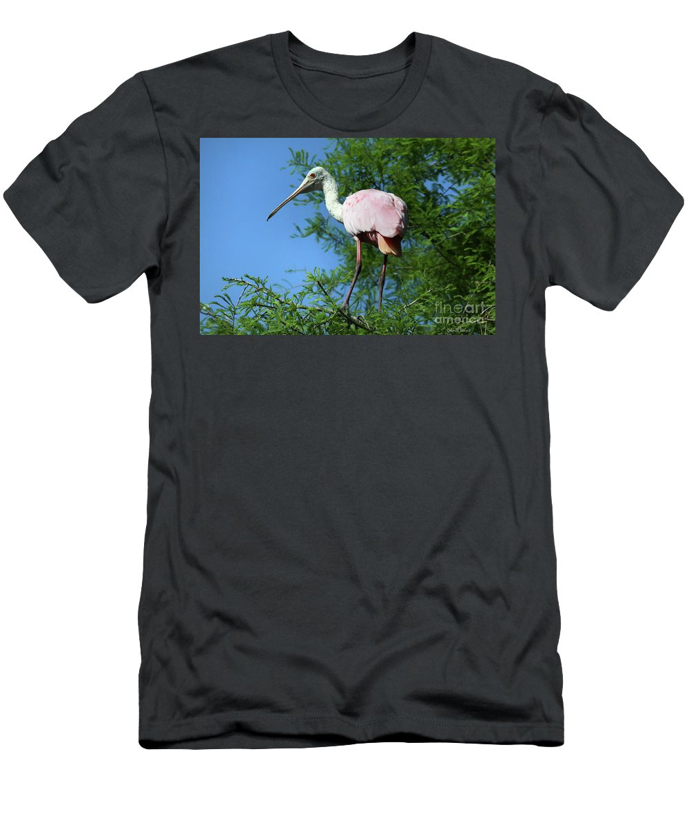 Spoonbill Men's T-Shirt (Athletic Fit) featuring the photograph Spoonbill In A Tree by Deborah Benoit