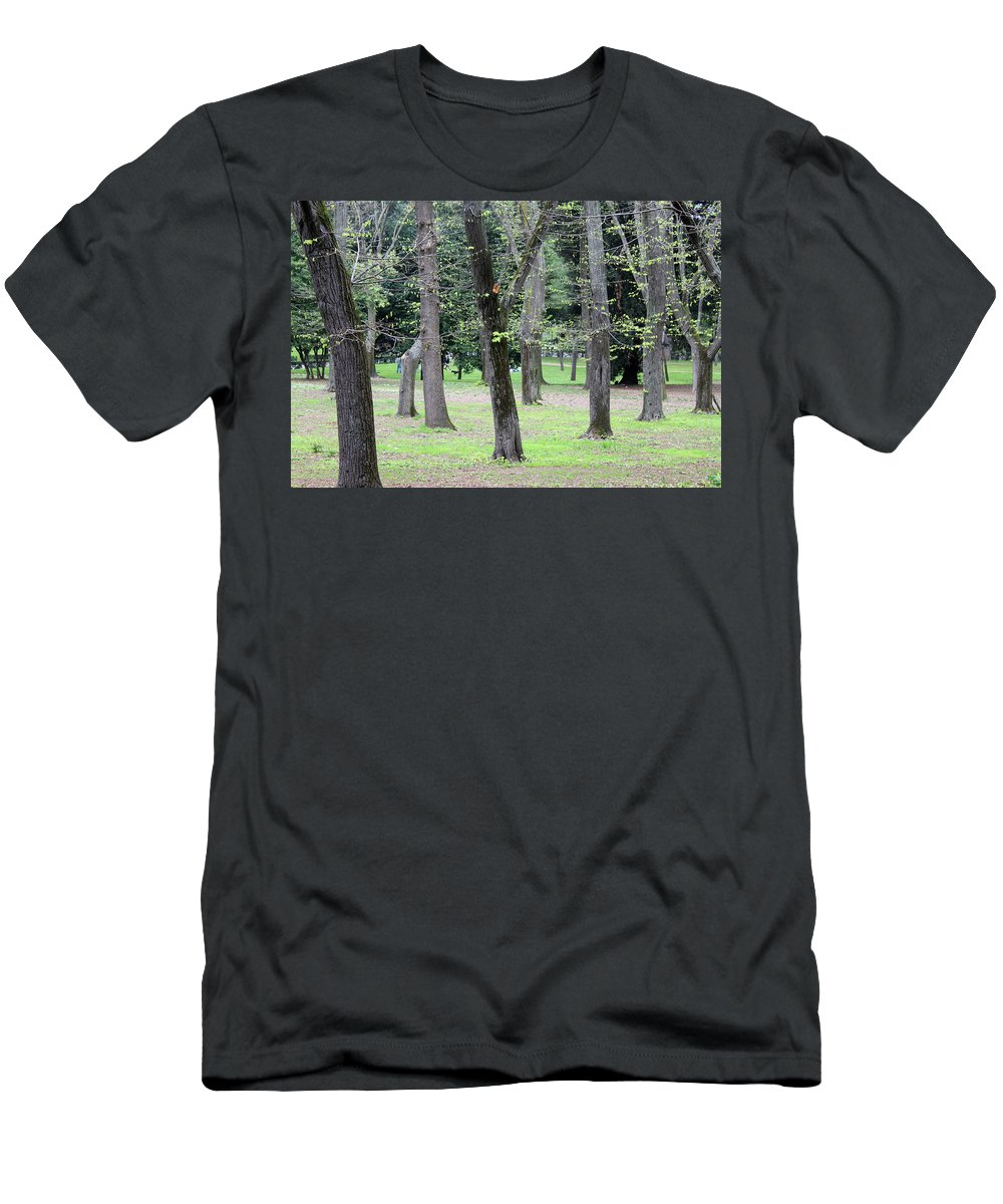 Spring Men's T-Shirt (Athletic Fit) featuring the photograph Spring In Rome by Munir Alawi