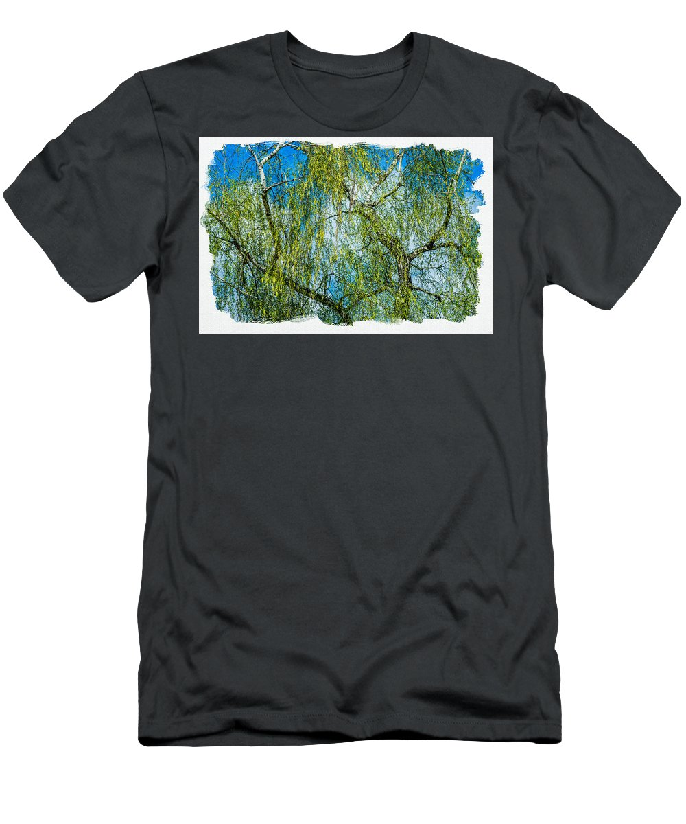 Birch Men's T-Shirt (Athletic Fit) featuring the photograph Spring Is In The Air by Alexander Senin