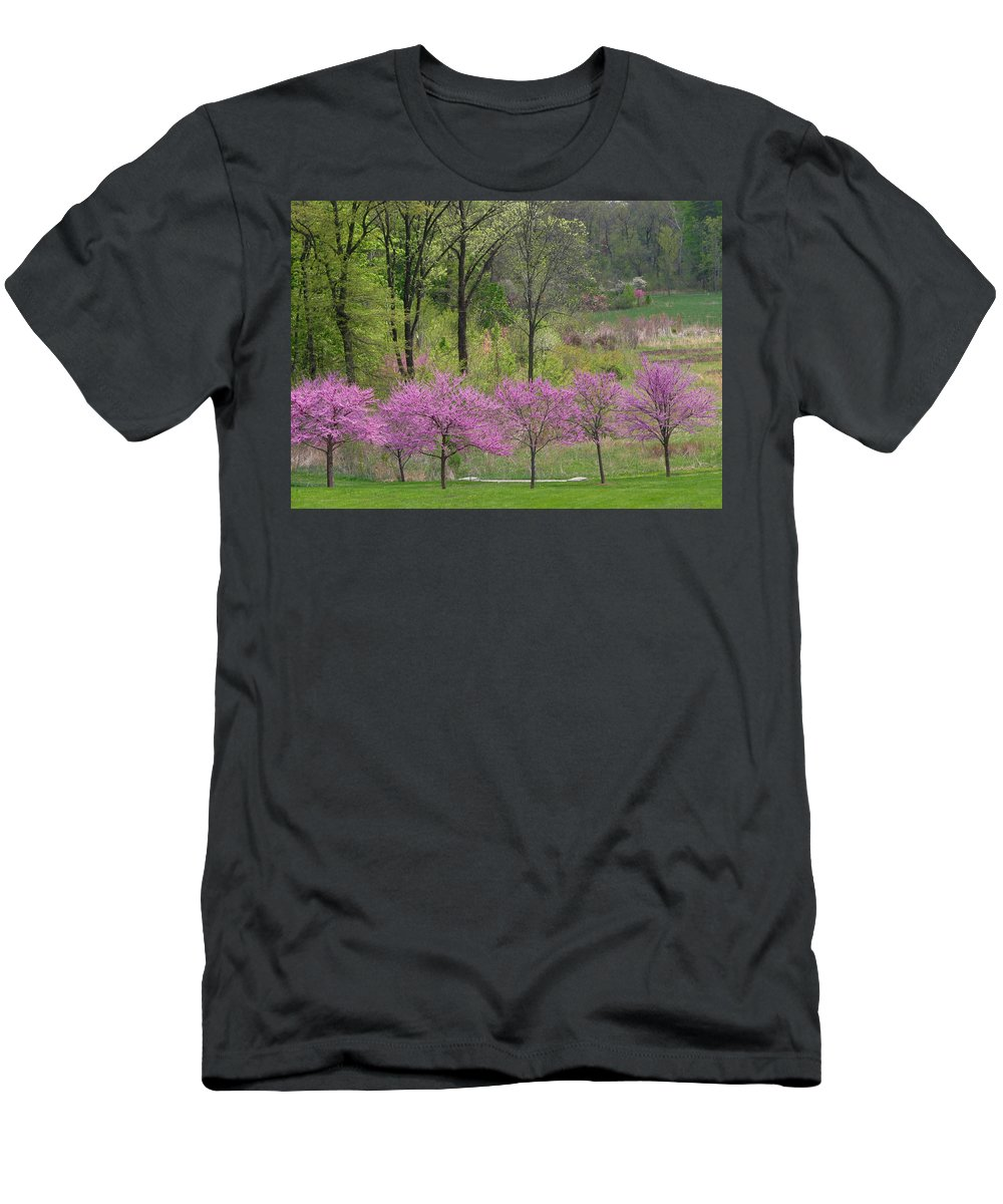 Spring Men's T-Shirt (Athletic Fit) featuring the photograph Spring Melody by Living Color Photography Lorraine Lynch