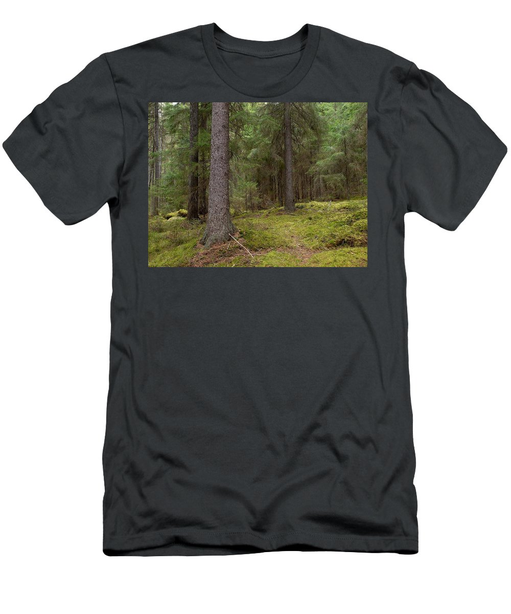 Lehtokukka Men's T-Shirt (Athletic Fit) featuring the photograph Spruce Forest by Jouko Lehto