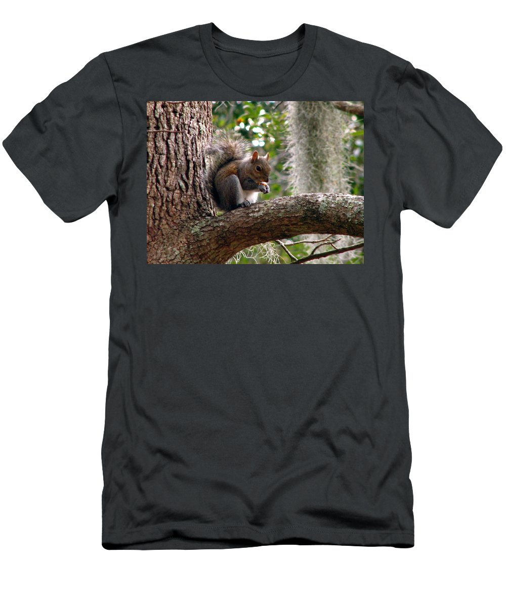 Squirrel Men's T-Shirt (Athletic Fit) featuring the photograph Squirrel 7 by J M Farris Photography
