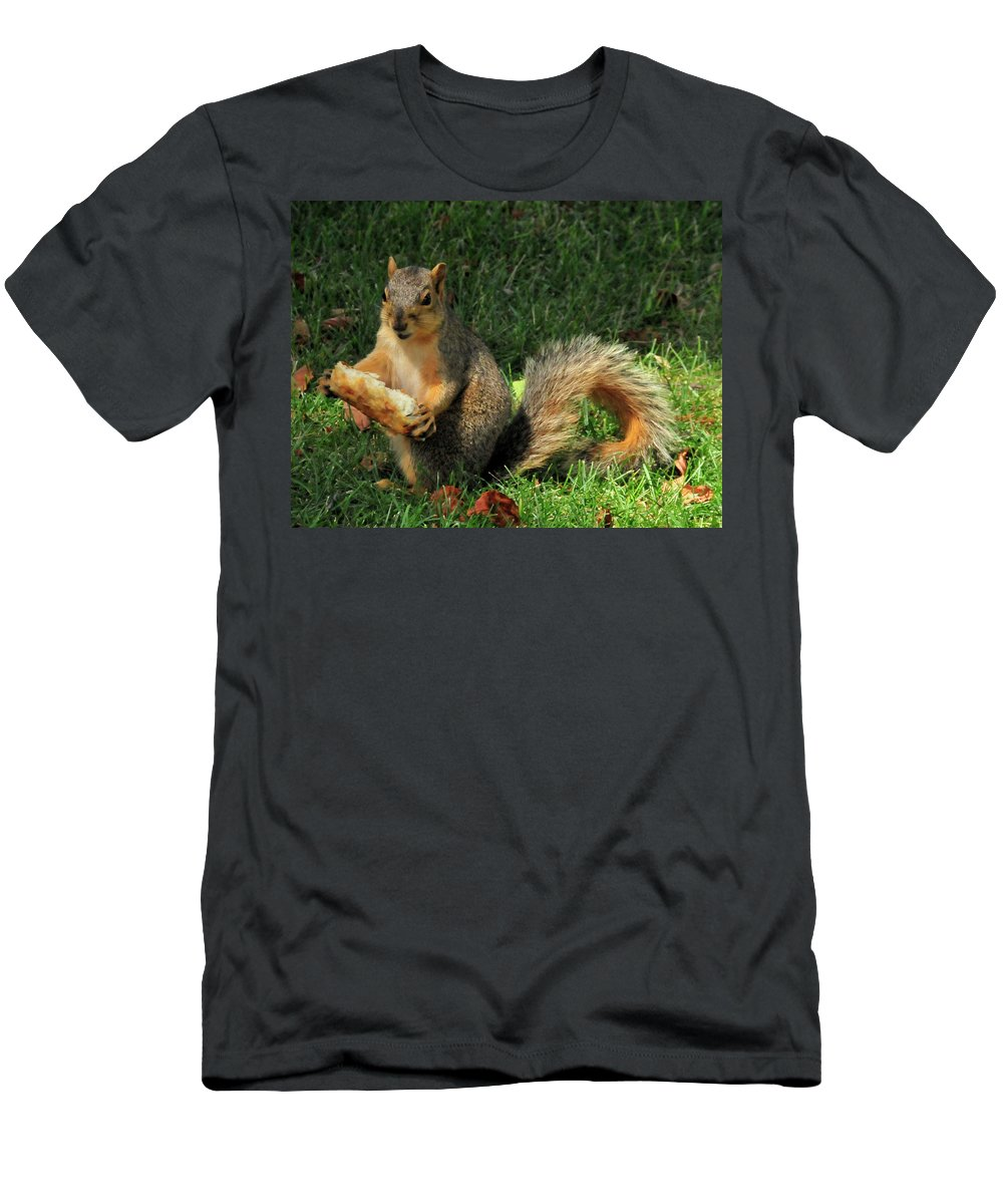 Squirrel Men's T-Shirt (Athletic Fit) featuring the photograph Squirrel Eating Pizza by David Arment