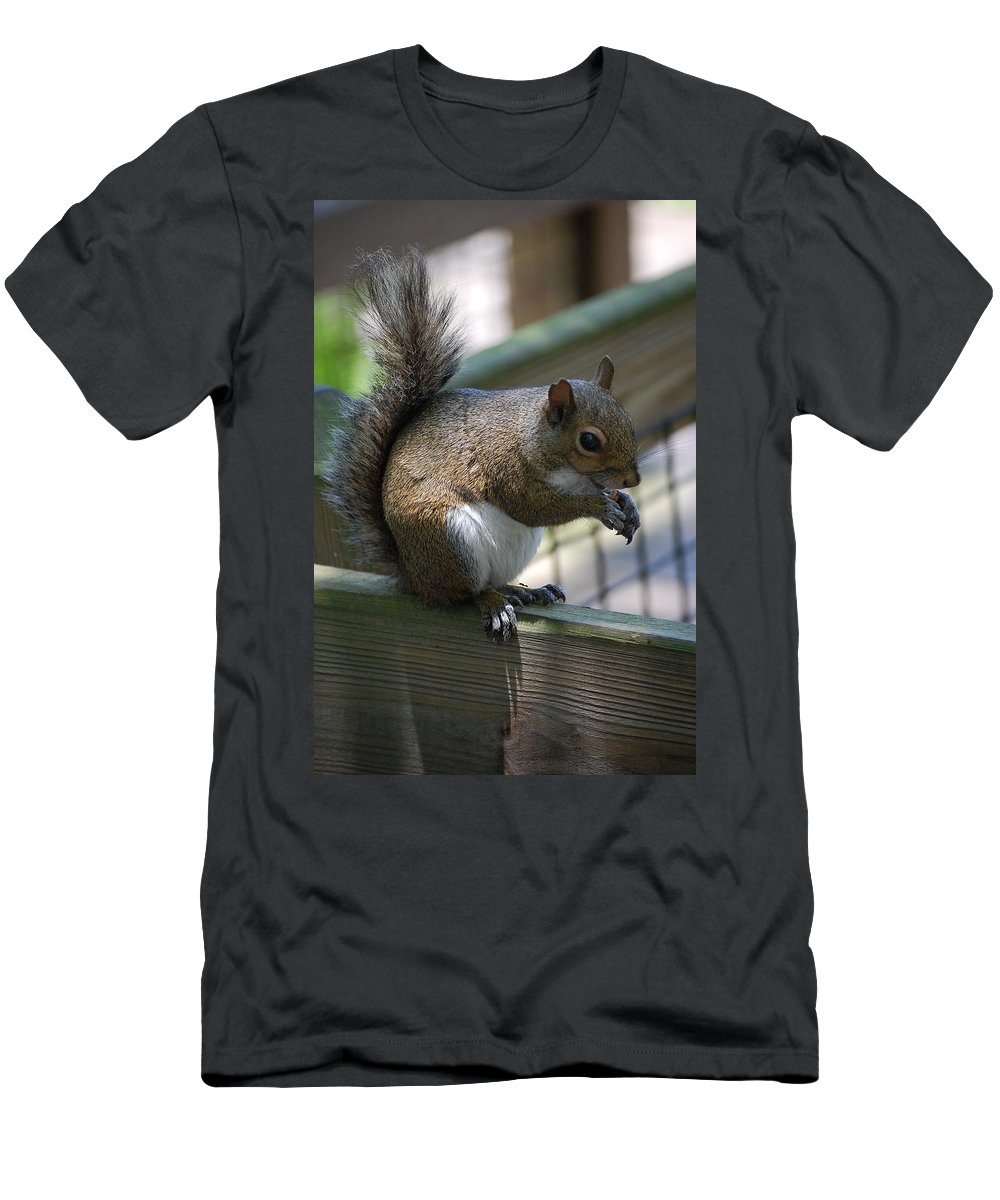 Squirrel Men's T-Shirt (Athletic Fit) featuring the photograph Squirrel II by Robert Meanor