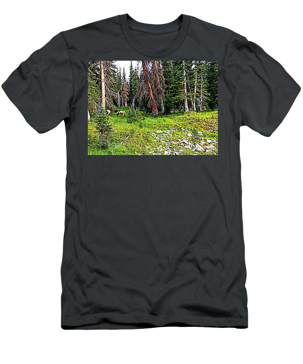 16.00x11.625 Men's T-Shirt (Athletic Fit) featuring the photograph Stag Forest by Lesli Sherwin
