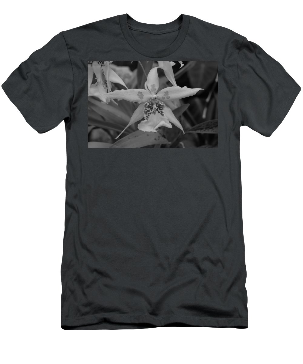 Macro Men's T-Shirt (Athletic Fit) featuring the photograph Star Flower by Rob Hans