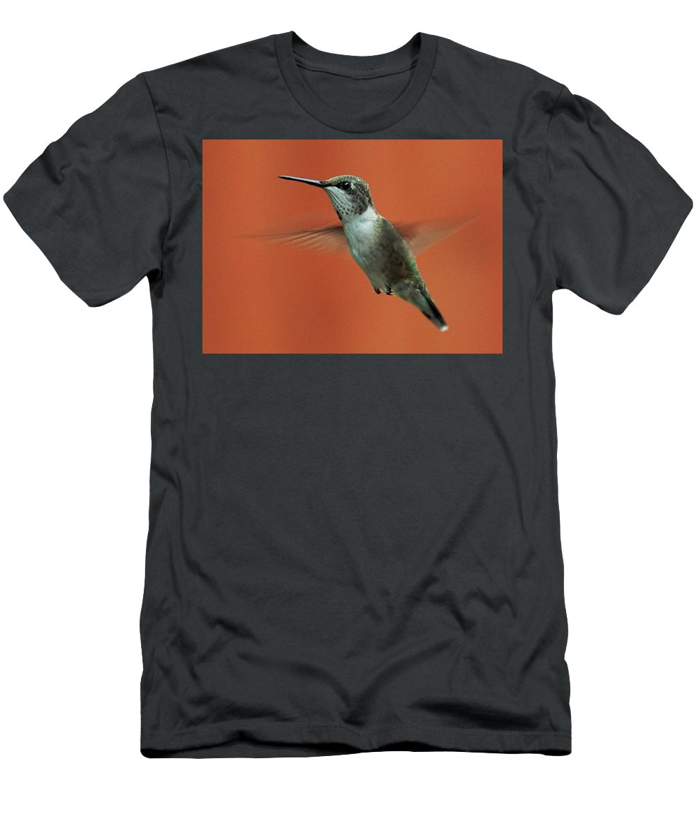 Hummingbird Men's T-Shirt (Athletic Fit) featuring the photograph Stare Down by Karen Beasley