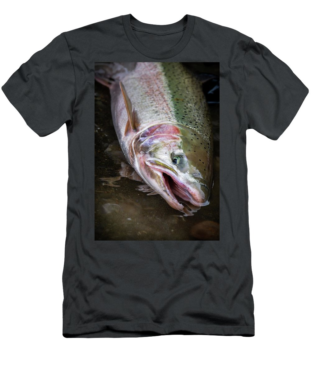 Fishing T-Shirt featuring the photograph Steelhead 1 by Jason Brooks