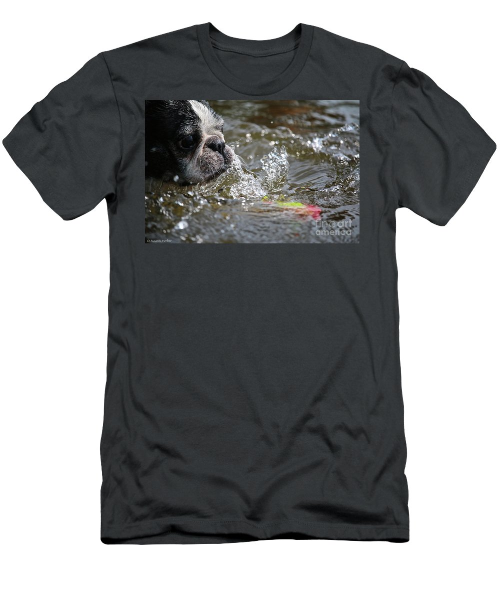 Boston Terrier Men's T-Shirt (Athletic Fit) featuring the photograph Striking Distance by Susan Herber