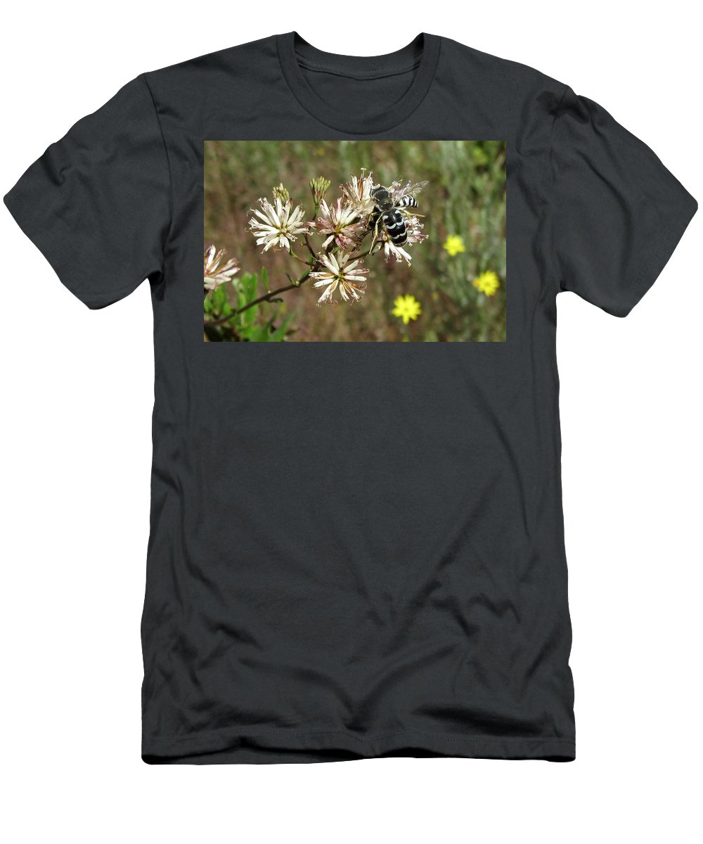 Nature Men's T-Shirt (Athletic Fit) featuring the photograph Striped Bee by Peg urban
