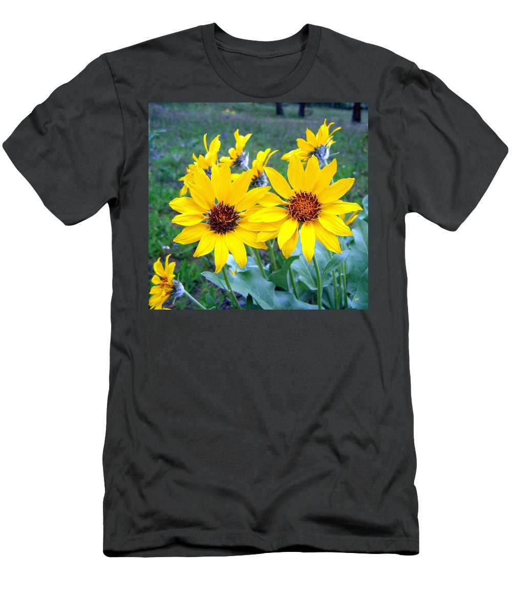 Sunflowers T-Shirt featuring the photograph Stunning Wild Sunflowers by Will Borden