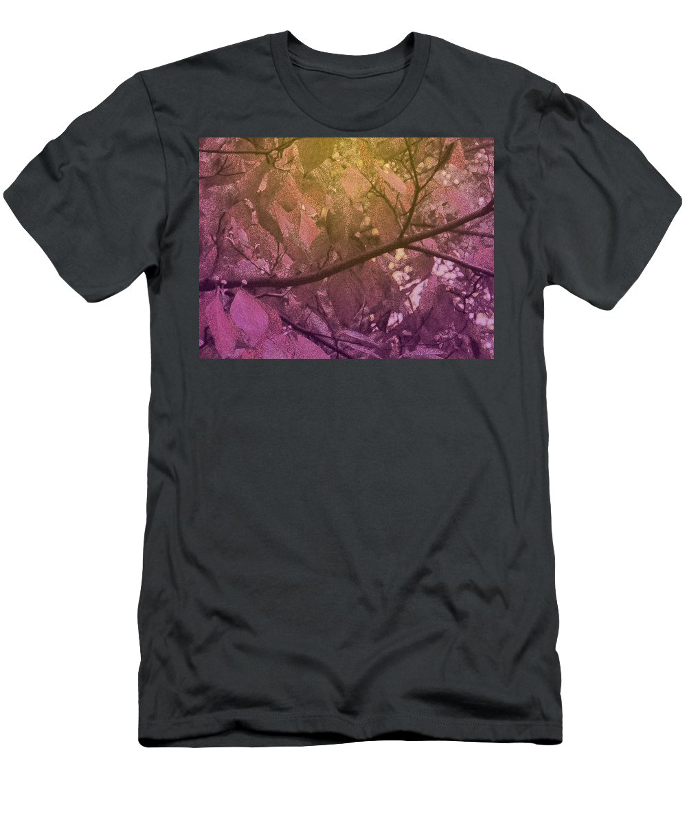 Tree Men's T-Shirt (Athletic Fit) featuring the photograph Sun Filter by Ian MacDonald