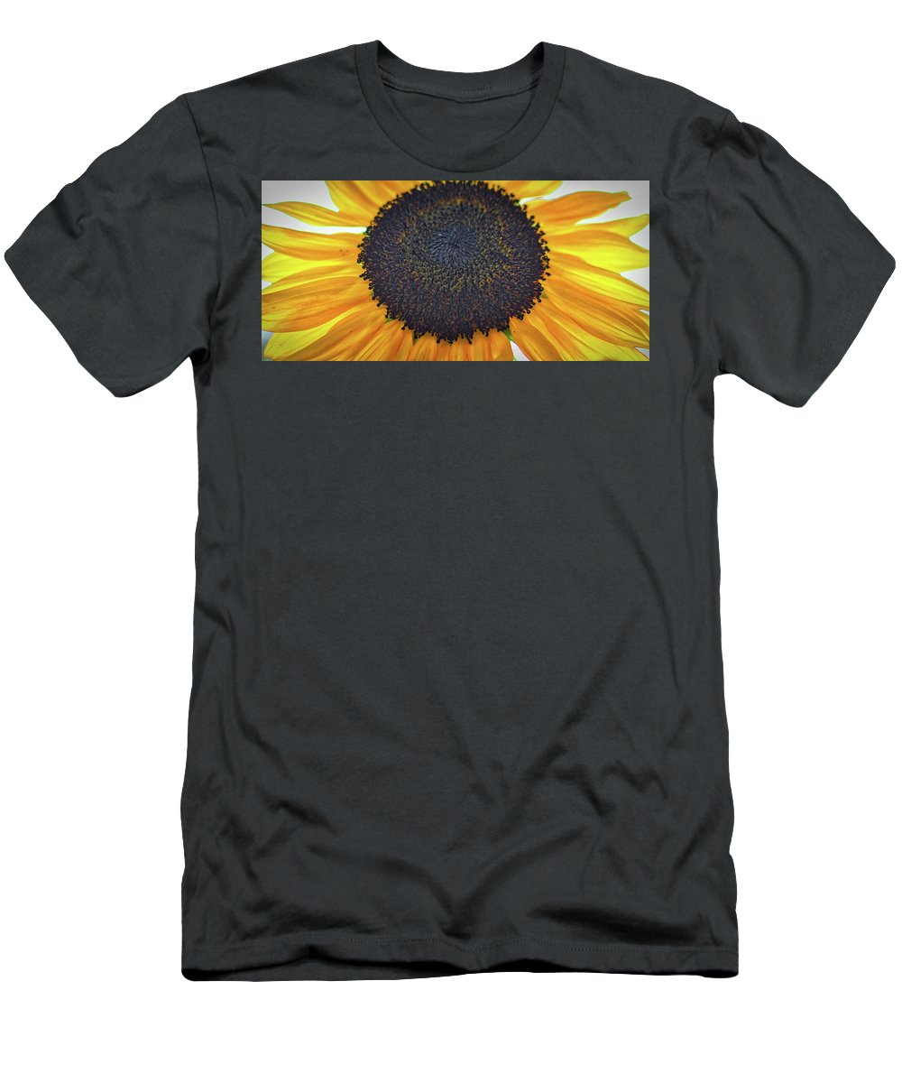 #sunflaower Men's T-Shirt (Athletic Fit) featuring the photograph Sun Flower by Christie Wilson