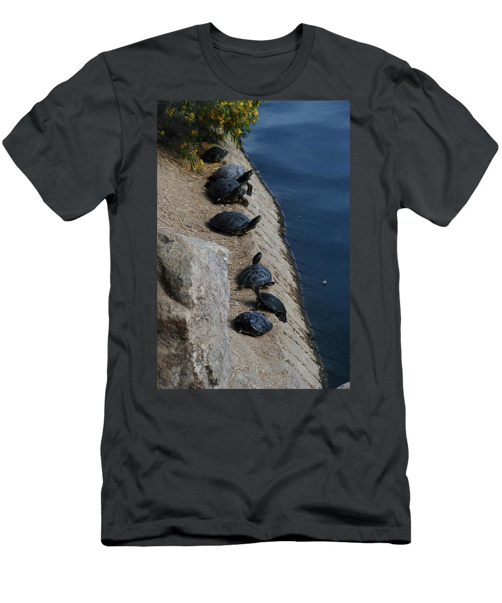 Turtle Men's T-Shirt (Athletic Fit) featuring the photograph Sunbathers by Carol Eliassen