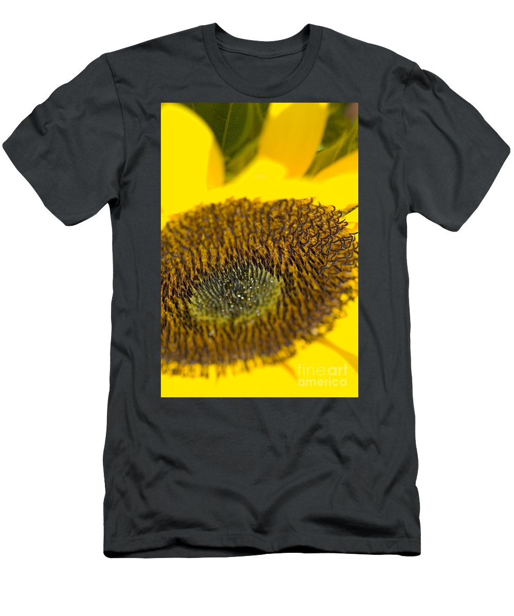 Abstract Men's T-Shirt (Athletic Fit) featuring the photograph Sunflower Close-up by Ray Laskowitz - Printscapes