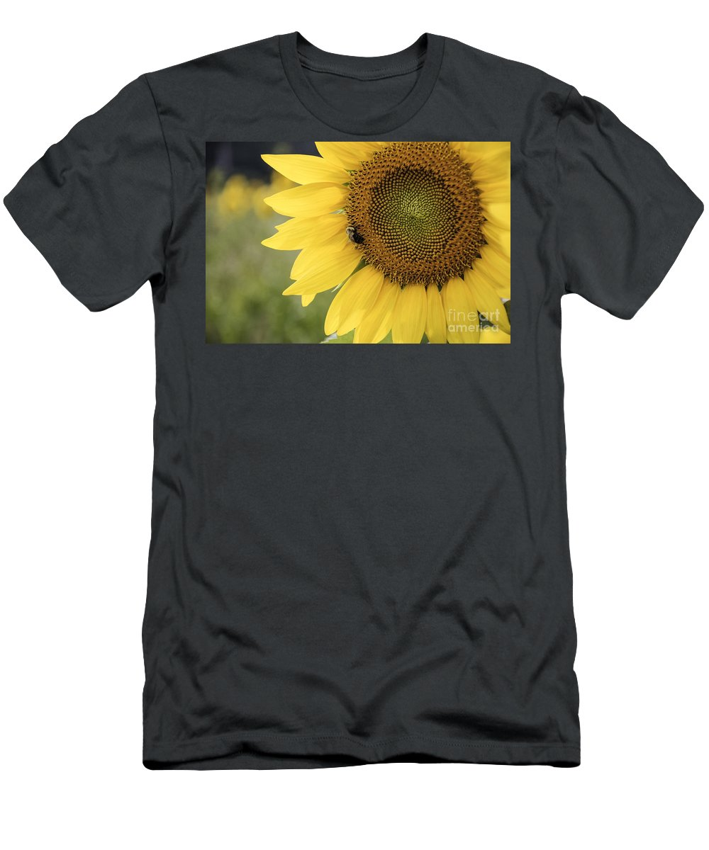 Bee Men's T-Shirt (Athletic Fit) featuring the photograph Sunflower by Debra Fedchin
