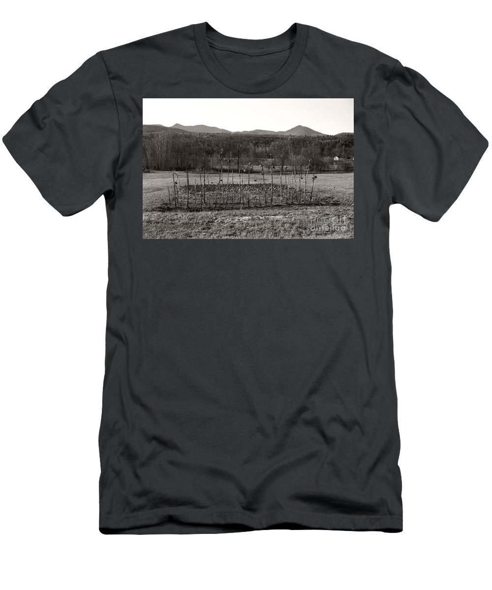 Men's T-Shirt (Athletic Fit) featuring the photograph Sunflower Plot by Heather Kirk