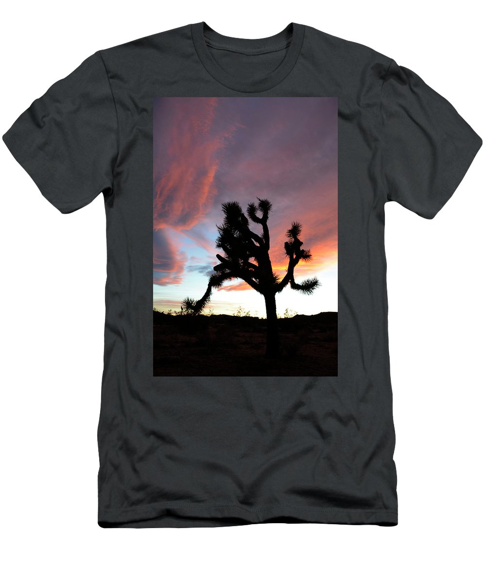 Joshua Tree National Park Men's T-Shirt (Athletic Fit) featuring the photograph Sunset At Joshua Tree 2 by Bob Christopher