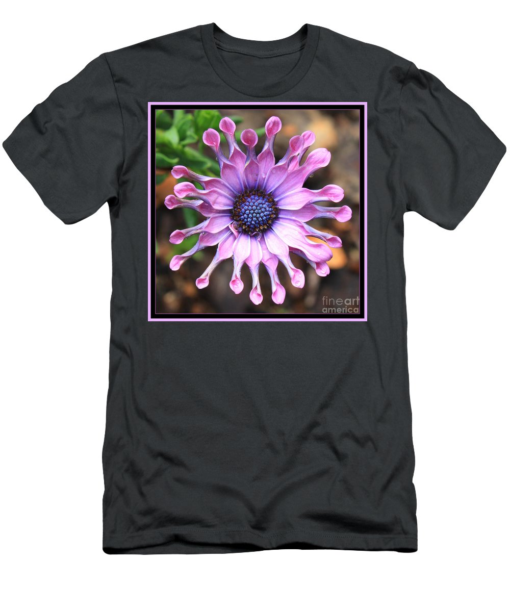 African Daisy Men's T-Shirt (Athletic Fit) featuring the photograph Superstar by Carol Groenen