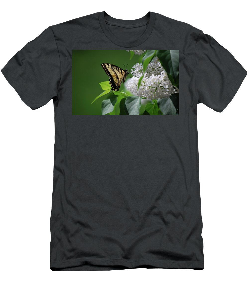 Swallowtail Men's T-Shirt (Athletic Fit) featuring the photograph Swallowtail Beauty by Lori Tambakis