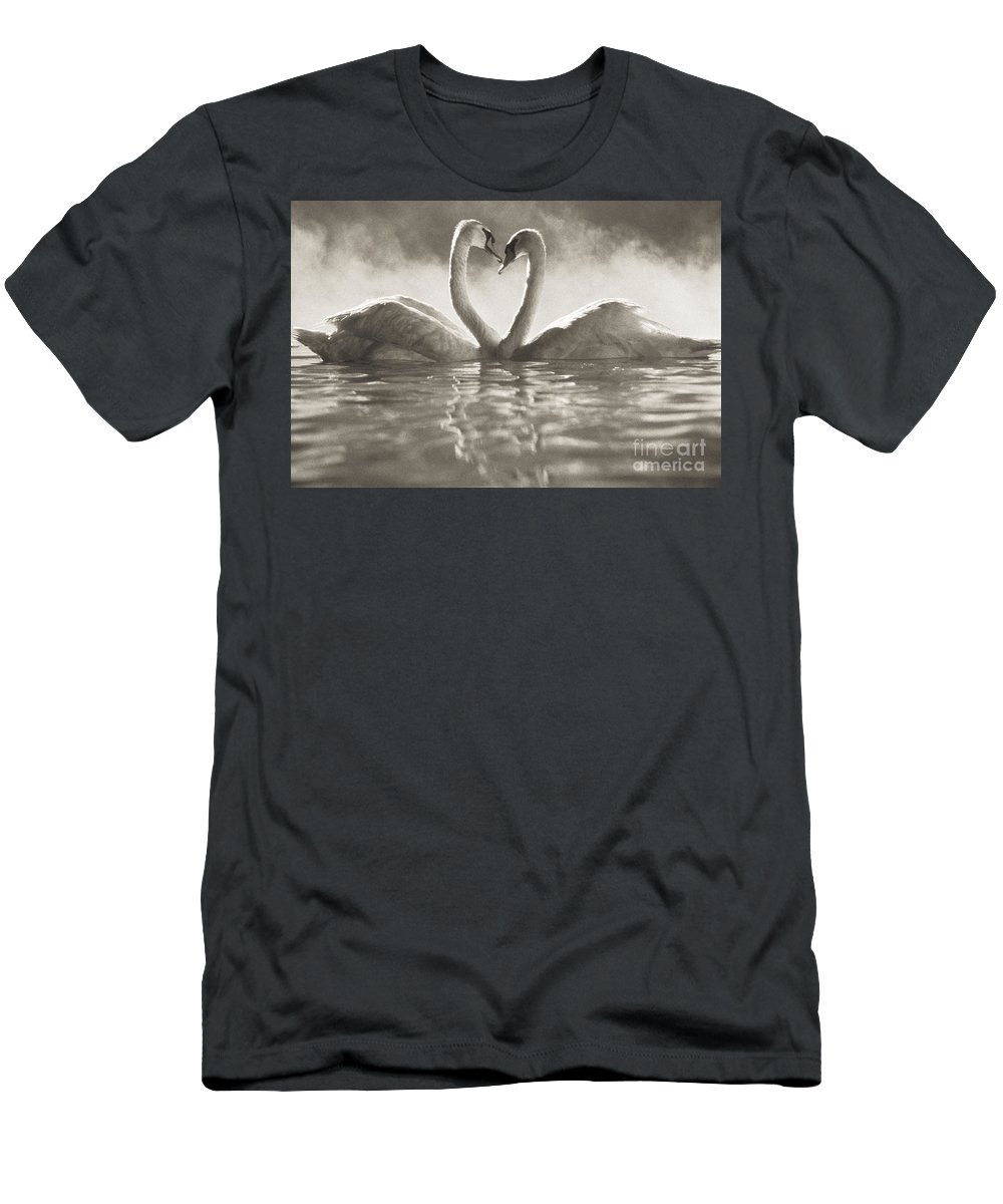Afternoon Men's T-Shirt (Athletic Fit) featuring the photograph Swans In Lake by Brent Black - Printscapes