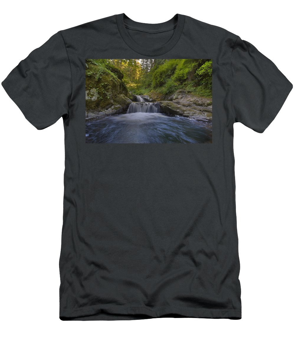 Sweet Creek Falls Trail Complex T-Shirt featuring the photograph Sweet Little Waterfall by David Gn
